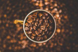 gourmet coffee online